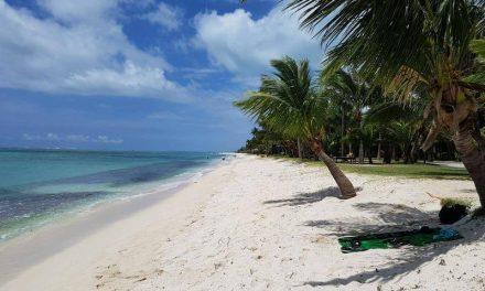 Zon, zee, strand en groene natuur tijdens een vakantie Mauritius