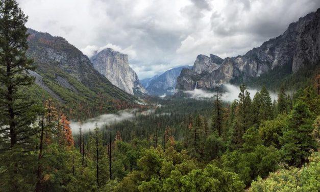 Camper relocation deals in Amerika, Canada, Australië en Nieuw Zeeland
